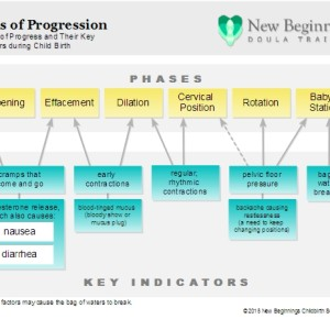Signs of Progression handout – free version