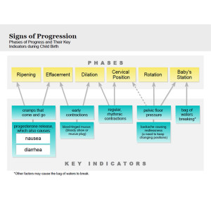 Signs of Progression handout