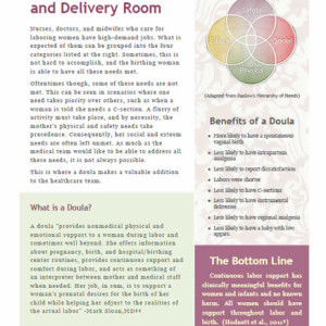 Doulas in the Labor and Delivery Room handout – free version