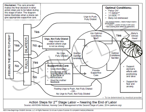 Action Steps for Second Stage Labor - Coloring Page Preview