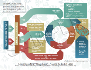 Action Steps for Second Stage Labor - Handout Preview