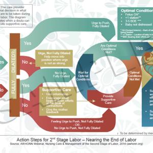 Actions Steps for 2nd Stage Labor – handout plus coloring page